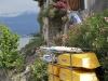 cerro20110716-092
